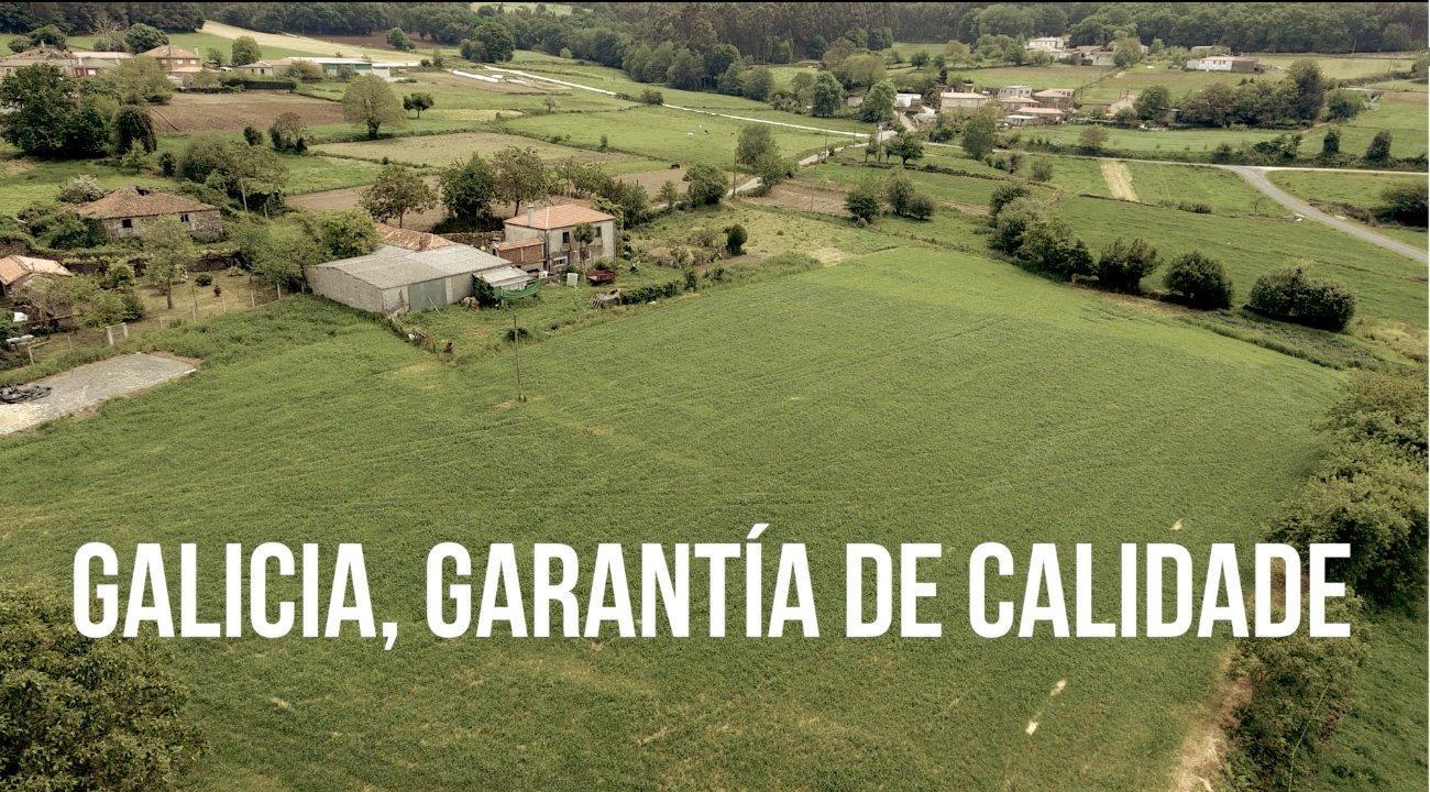 Se Sentes Galicia