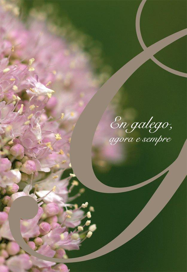 En galego, agora e sempre (Vilagarcia)